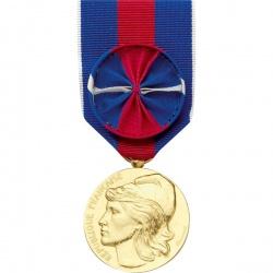 Médaille ordonnance Service Militaire Volontaire Bronze Doré