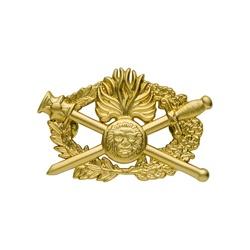 Insigne Brevet Diplome d'arme Qualification supérieure