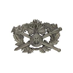Insigne Brevet Corps de soutien technique administratif 1er niveau