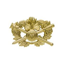 Insigne Brevet Corps de soutien technique administratif 2ème niveau