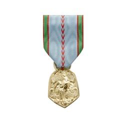 Médaille ordonnance Commemo 39/45