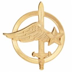 Insigne de béret Commando de l'air